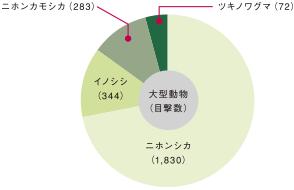 大型動物目撃グラフ
