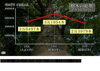 樹木数の推移